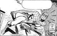 Spider-Man Newspaper Strips Vol 1 01-1977