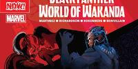 Black Panther: World of Wakanda Vol 1