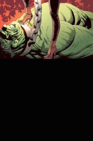 File:Marvel Knights Hulk Vol 1 3 Textless.jpg