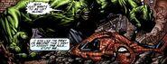 Bruce Banner (Earth-616) vs Spider-Man