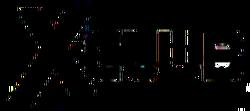 X-Club (2012) Logo