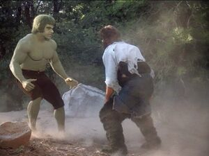 David Banner (Earth-400005) and Harlan Bates(Earth-400005) from The Incredible Hulk (TV series) Season 2 2 001