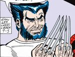 James Howlett (Earth-77013) Spider-Man Newspaper Strips