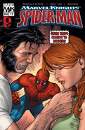 Marvel Knights Spider-Man Vol 1 13