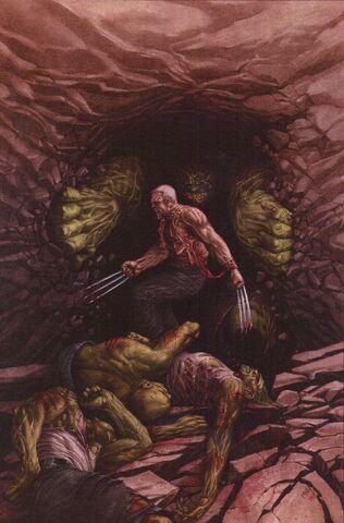 File:Wolverine Old Man Logan Giant-Size Vol 1 1 Textless.jpg