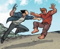 Teon Macik (Earth-616) sparring James Howlett (Earth-616)