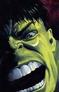 Hulk Nightmerica Vol 1 2 Textless
