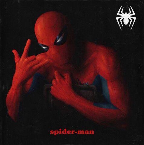 File:Peter Parker The Spectacular Spider-Man Vol 1 1 Hip-Hop Variant Textless.jpg