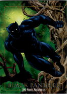 T'Challa (Earth-616) from Marvel Masterpieces Trading Cards 1992 0001