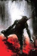 Wolverine MAX Vol 1 14 Textless