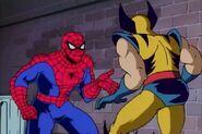 Peter Parker & Wolverine (Logan) (Earth-92131)