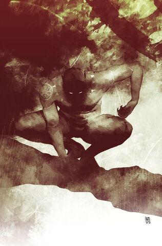 File:Secret Empire Vol 1 7 Hydra Hero Variant Textless.jpg