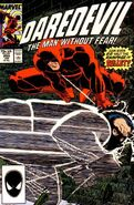 Daredevil Vol 1 250