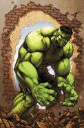 Marvel Age Hulk Vol 1 3 Textless
