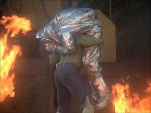 David Banner (Earth-400005) from The Incredible Hulk (TV series) Season 2 11 001