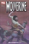 Wolverine Vol 3 5