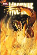 Wolverine Vol 3 8
