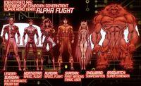 Alpha Flight (Earth-20051) from Marvel Adventures Iron Man Vol 1 11 0001