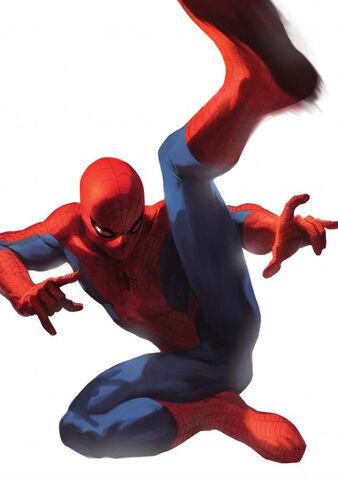 File:Amazing Spider-Man Vol 1 608 Textless 70 Year Variant.jpg