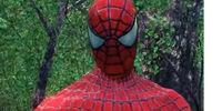 Peter Parker (Earth-TRN490)