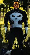 Frank Castle (Earth-616) from Marvel Graphic Novel Vol 1 40 0001