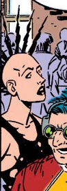 Sylvia (Earth-616) from Amazing Spider-Man Vol 1 337 001