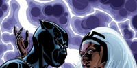 Black Panther Vol 6 17