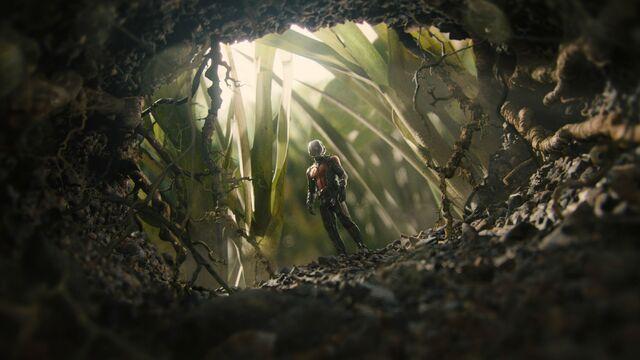 File:Ant-Man 14.jpg