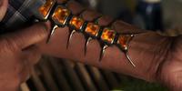 Centipede Serum