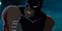T'Chaka (Ultimate Avengers)