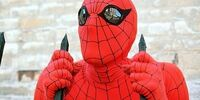 Spider-Man suit (Swackhamer series)