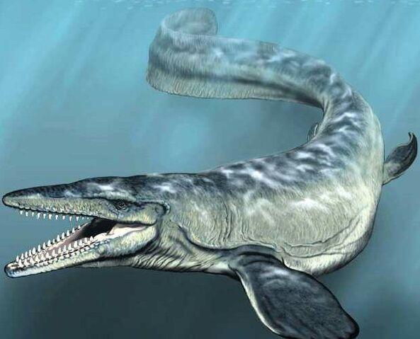 File:Mosasaur-dinosaurs-28881734-616-498.jpg