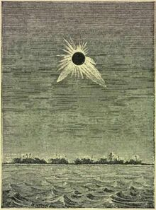 The Corona During the Eclipse of May 1883