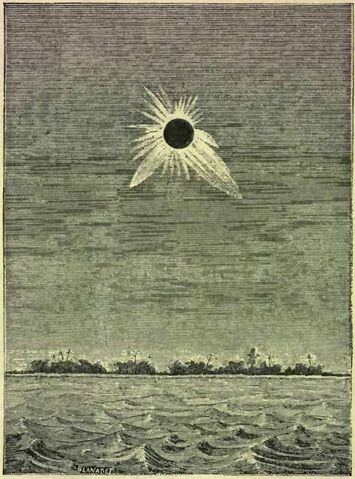 File:The Corona During the Eclipse of May 1883.jpg