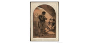 Irish Frank 1869