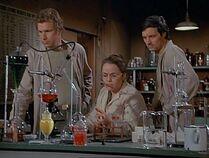 Lab-the incubator