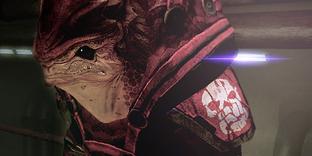 Codex Blood Pack