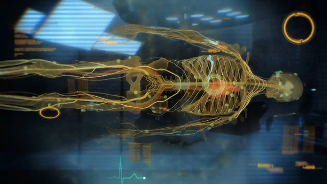 File:Project lazarus - shep skeleton (after).png