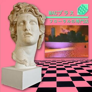 FLORAL SHOPPE - MACINTOSH PLUS