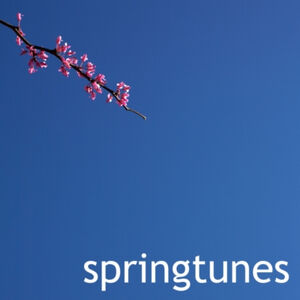 Ubiktune's Springtunes - Various Artists