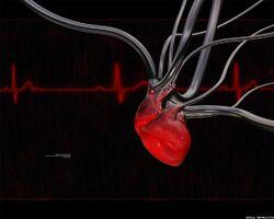 Heart-of-the-machine