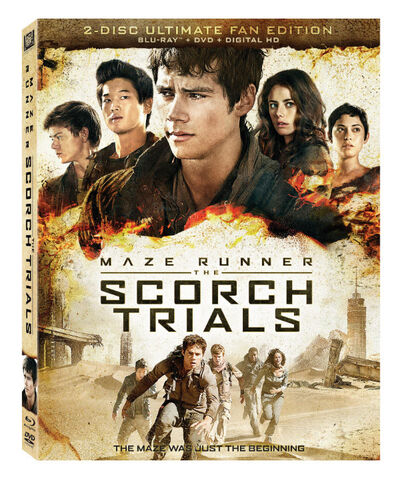 Thescorchtrialsdvd