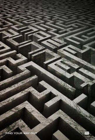 File:The Maze Runner 15.jpg