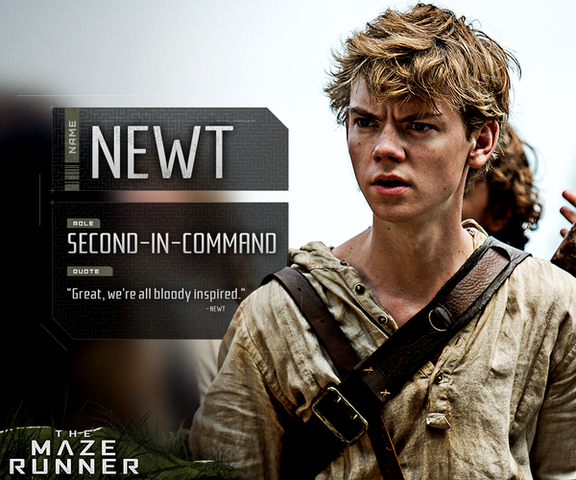 File:Identity Newt.png