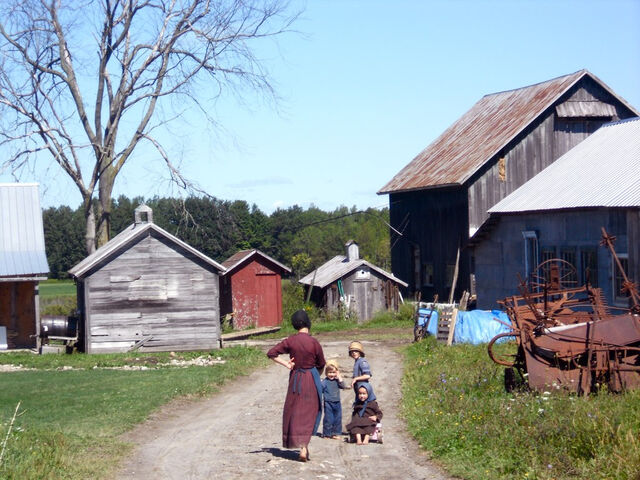 File:Farm wisdom amish.jpg