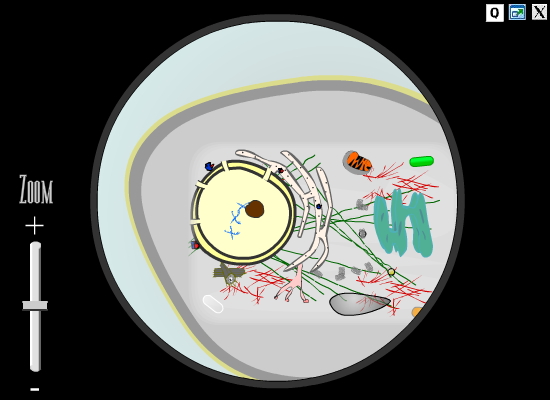File:Screenshot of The Cell.PNG