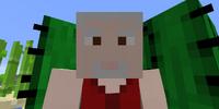Ned Edgewalker