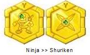 Ninja Medal