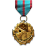File:Combat Versatility Medal.png