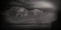 Outskirt Skirmish